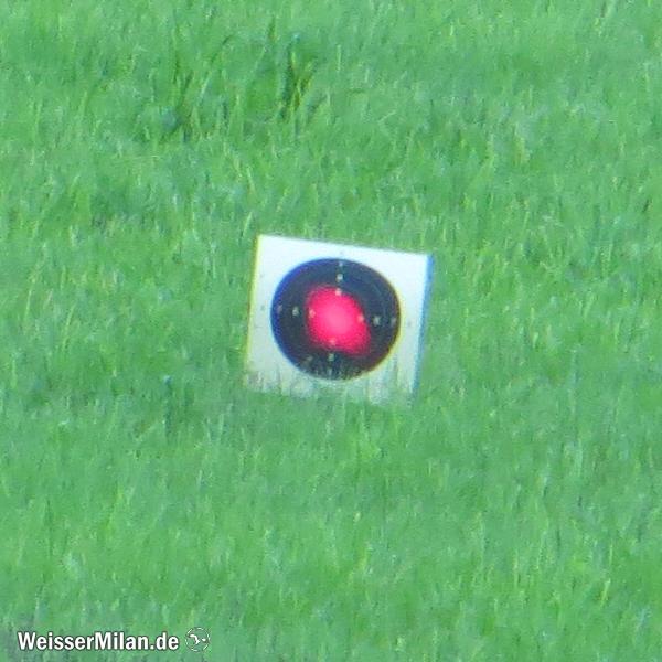 Pistolenspiegel auf 100 m, anvisiert mit dem Aimpoint Comp M4