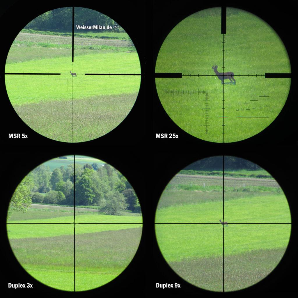 Das MSR-Absehen befindet sich in der 1. Bildebene (Objektivbildebene), dadurch wird es mit dem Heranzoomen mitvergrößert. Das Duplex-Absehen befindet sich in der 2. Bildebene (Okularbildebene) und bleibt unabhängig vom Zoom statisch. Das Reh befindet sich in allen vier Teilbildern in einer Entfernung von 300m. Die Vergrößerungen ergeben sich aus den minimalen und maximalen Einstellungen am jeweiligen Zielfernrohr.